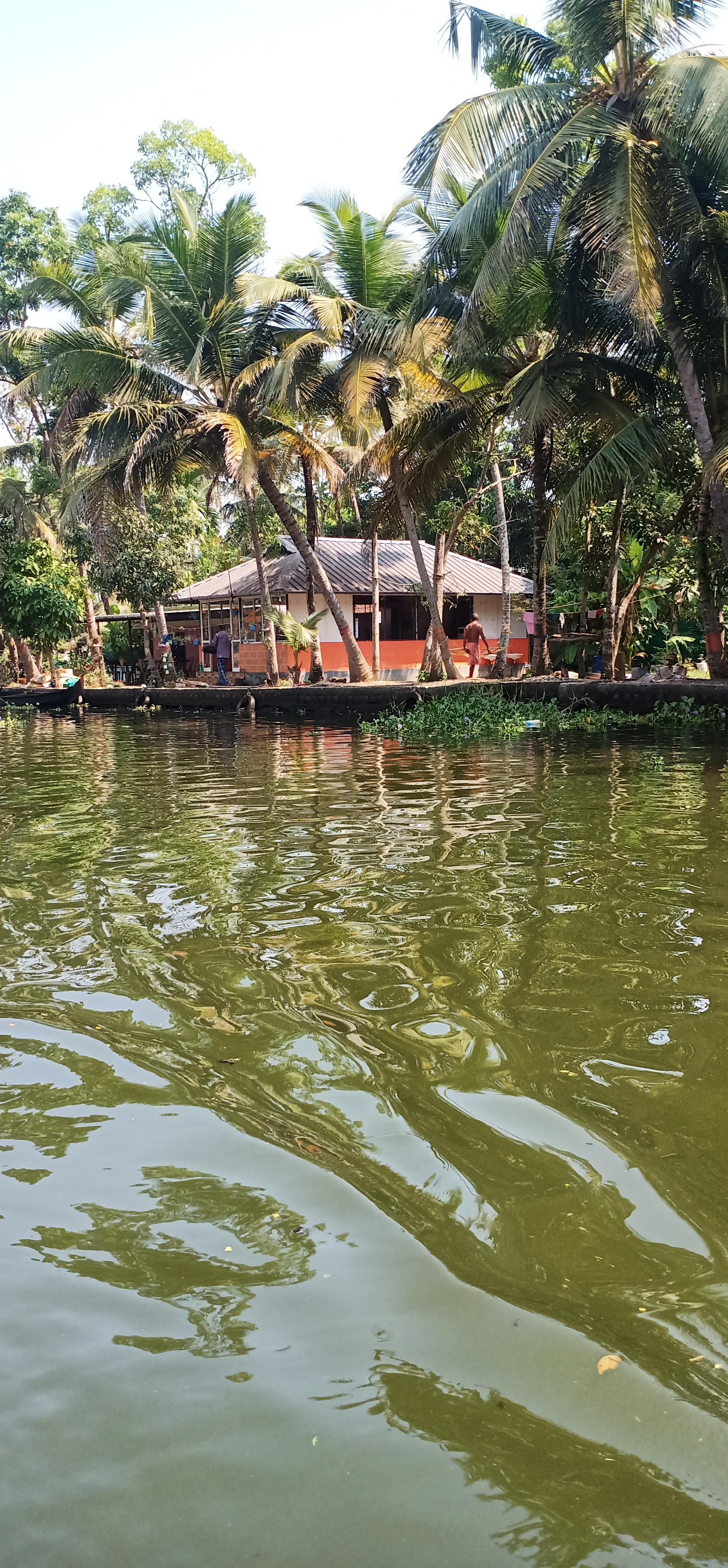Alleppy_Backwaters_Kerala_9