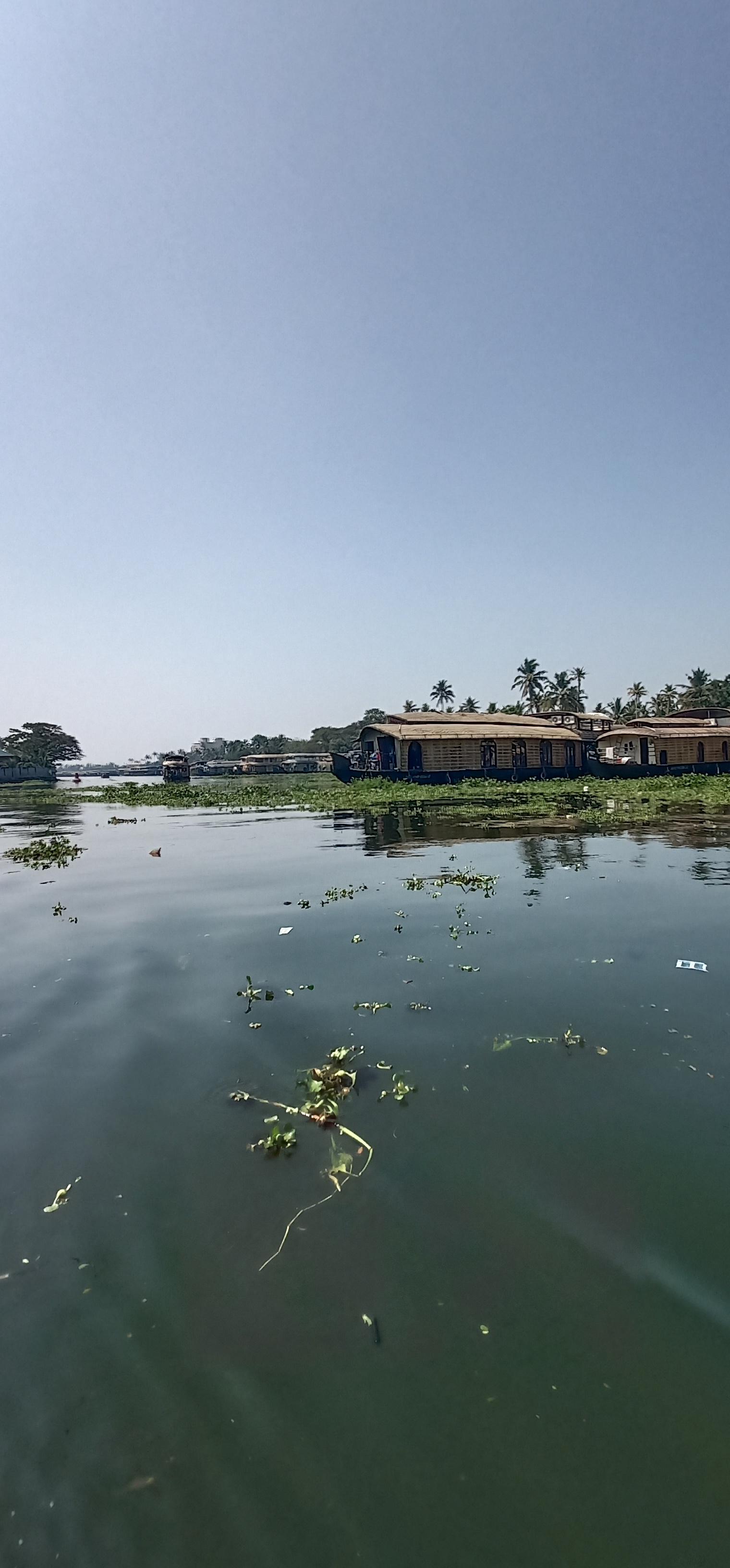 Alleppy_Backwaters_Kerala_houseboat_lake