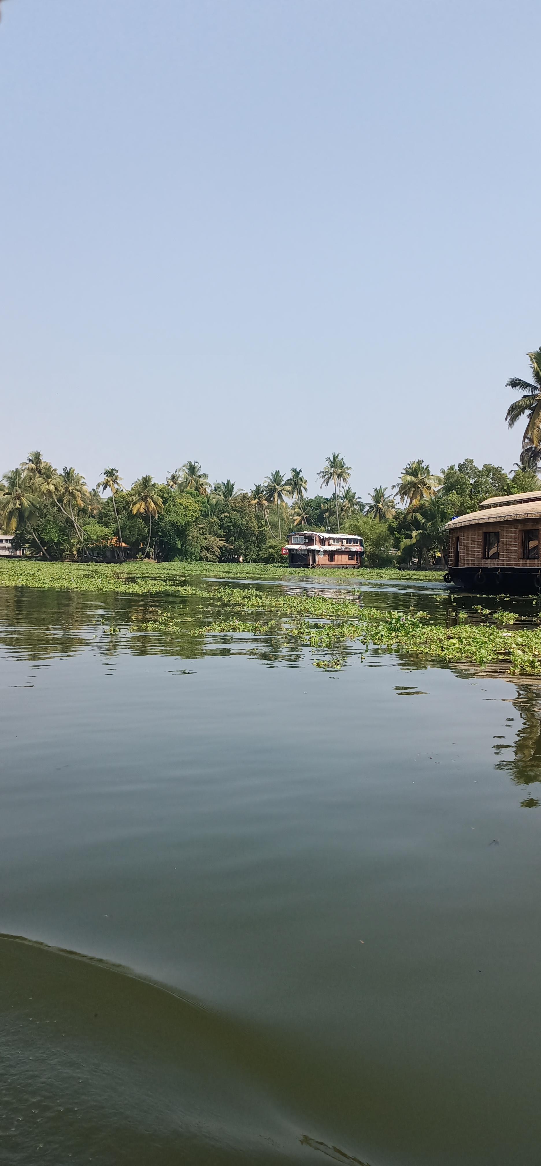Alleppy_Backwaters_Kerala_6